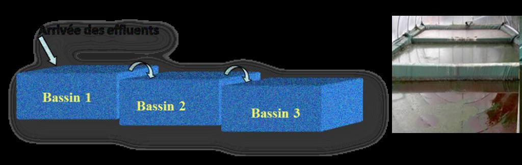 Copyright : Daniel Garcia/CEA Système de lagunage composé de trois bassins couverts, non aérés et en cascade. A droite, les bassins prennent la couleur des bactéries avec lesquelles ils ont été ensemencés.